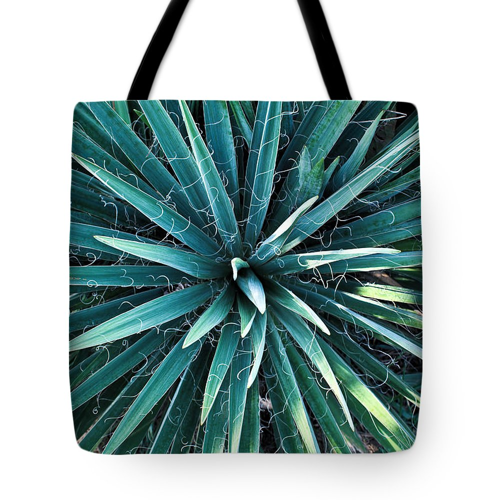 Yucca Tote Bag featuring the photograph Yucca Plant Detail by Douglas Barnett