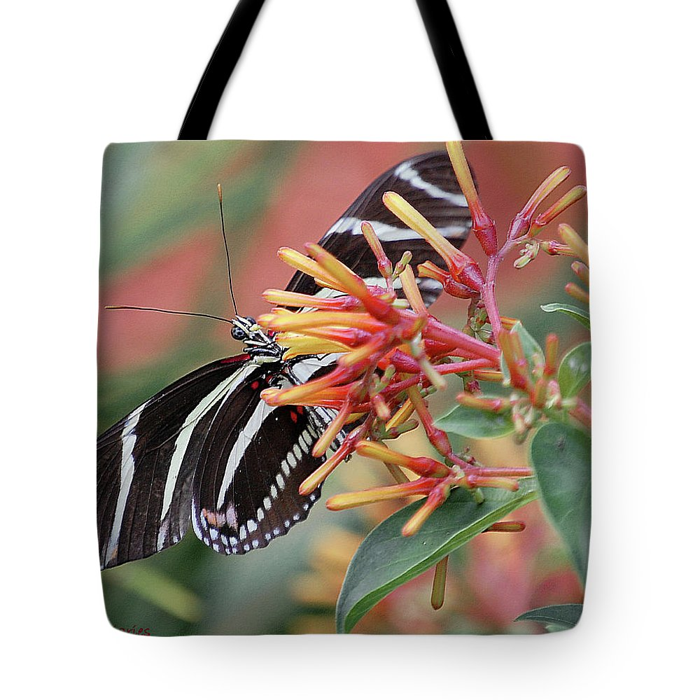 Butterfly Tote Bag featuring the digital art Zebra Butterfly With Blue Eyes by DigiArt Diaries by Vicky B Fuller