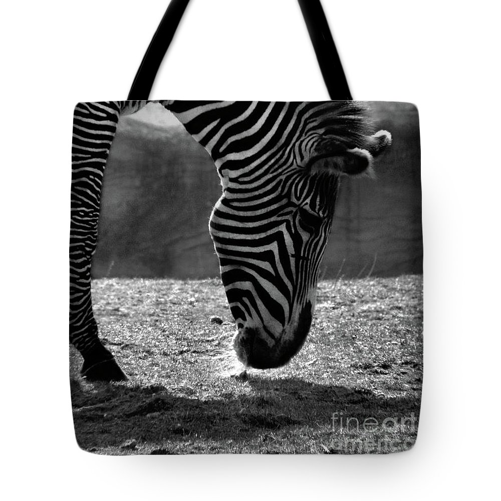 Zebra Tote Bag featuring the photograph Zebra by September Stone