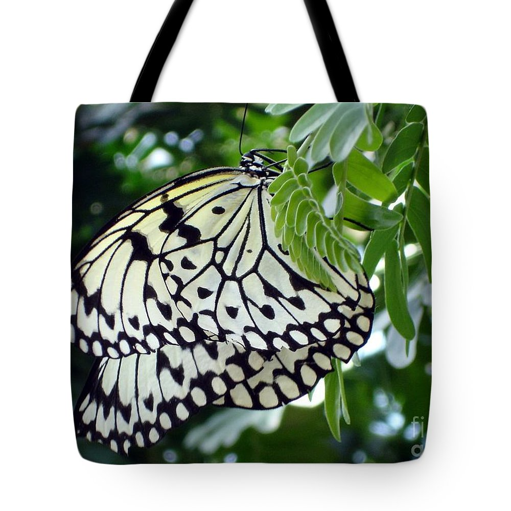 Butterfly Tote Bag featuring the photograph Zebra In Disguise by Shelley Jones