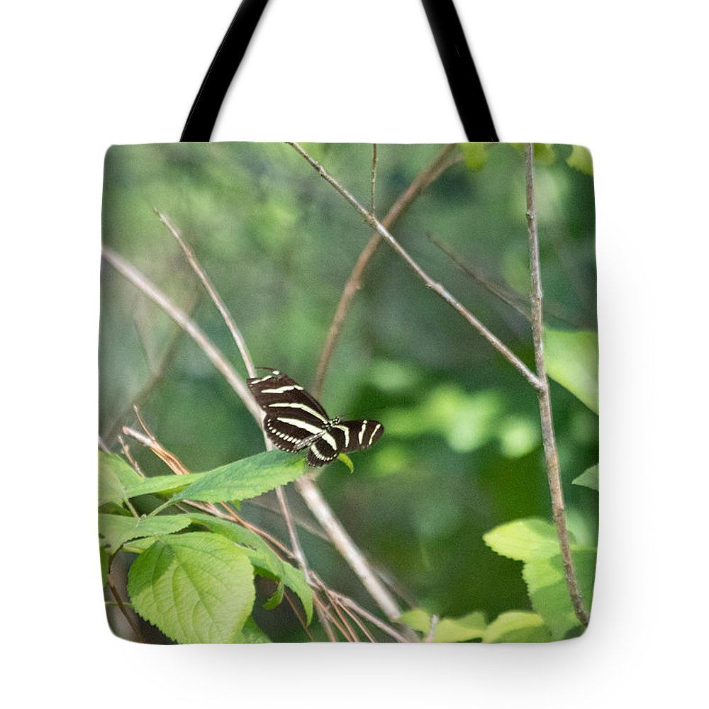 Zebra Longwing Butterfly Tote Bag featuring the photograph Zebra Longwing Butterfly About To Take Flight by JR Cox