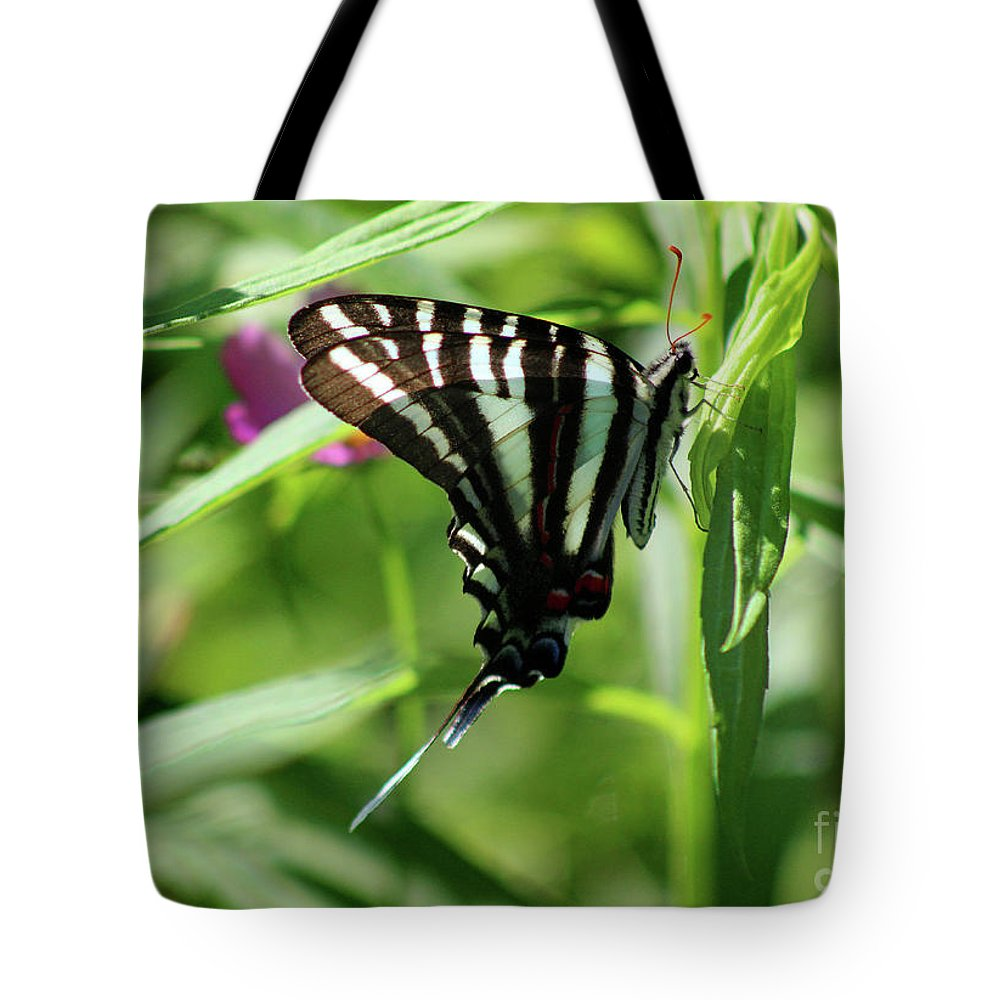 Zebra Tote Bag featuring the photograph Zebra Swallowtail Butterfly In Green by Karen Adams
