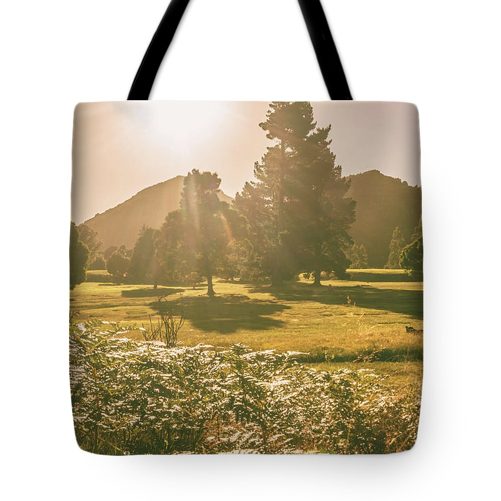 Countryside Tote Bag featuring the photograph Zeehan Afternoon Meadows by Jorgo Photography - Wall Art Gallery