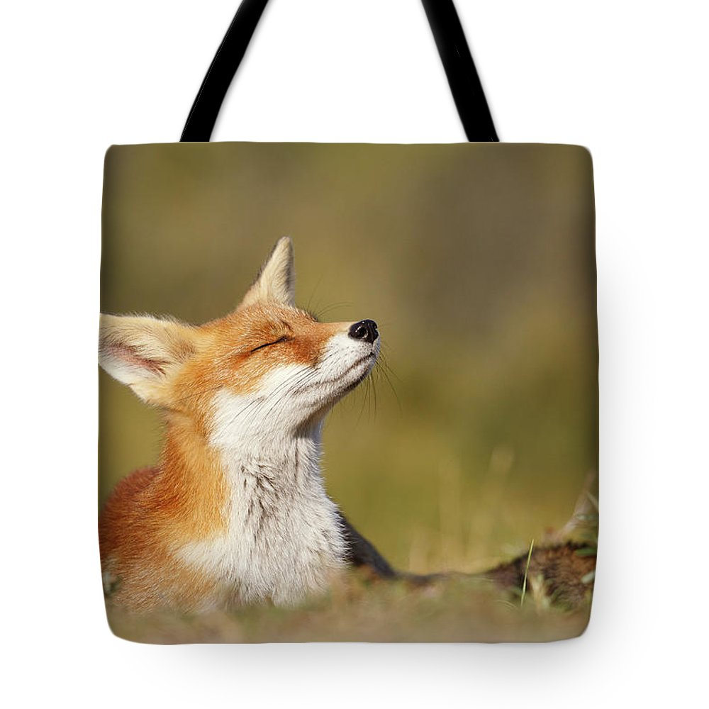 Red Fox Tote Bag featuring the photograph Zen Fox Series - Summer Fox by Roeselien Raimond