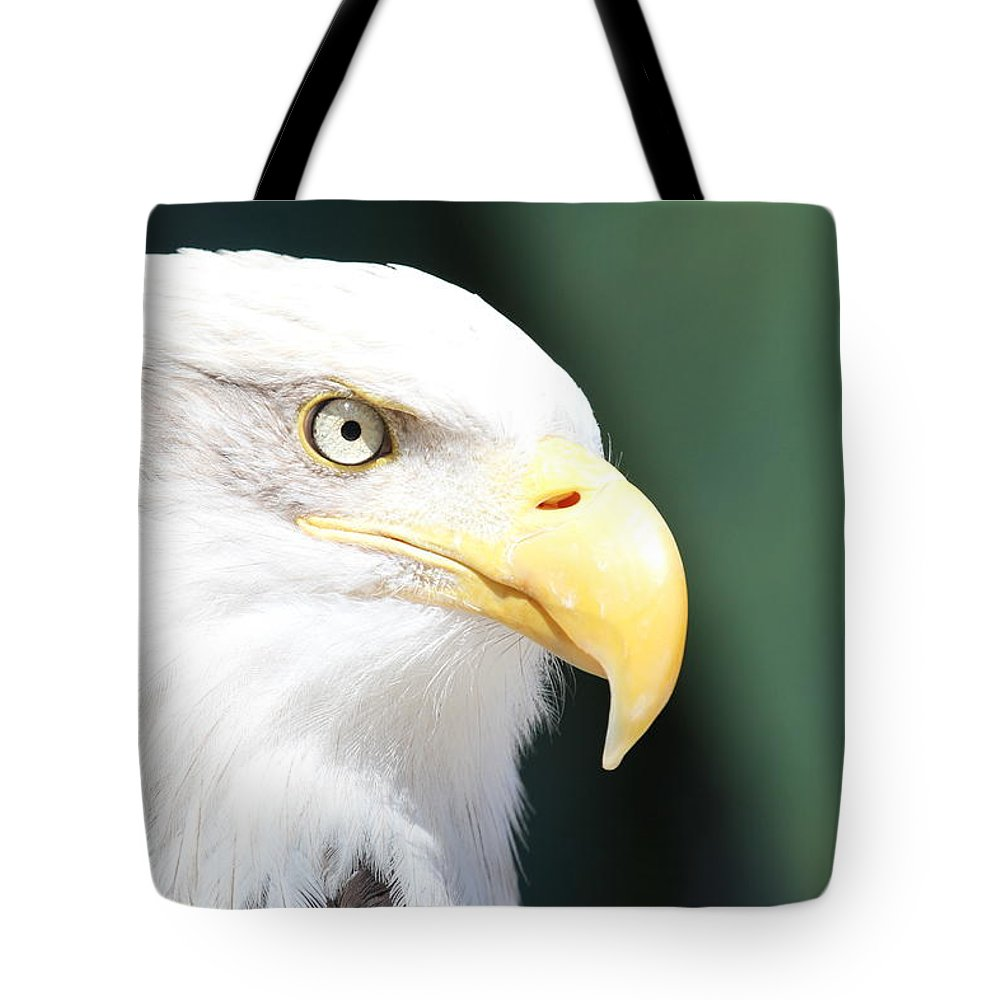 Eagle Tote Bag featuring the photograph Zeroed In by Laddie Halupa