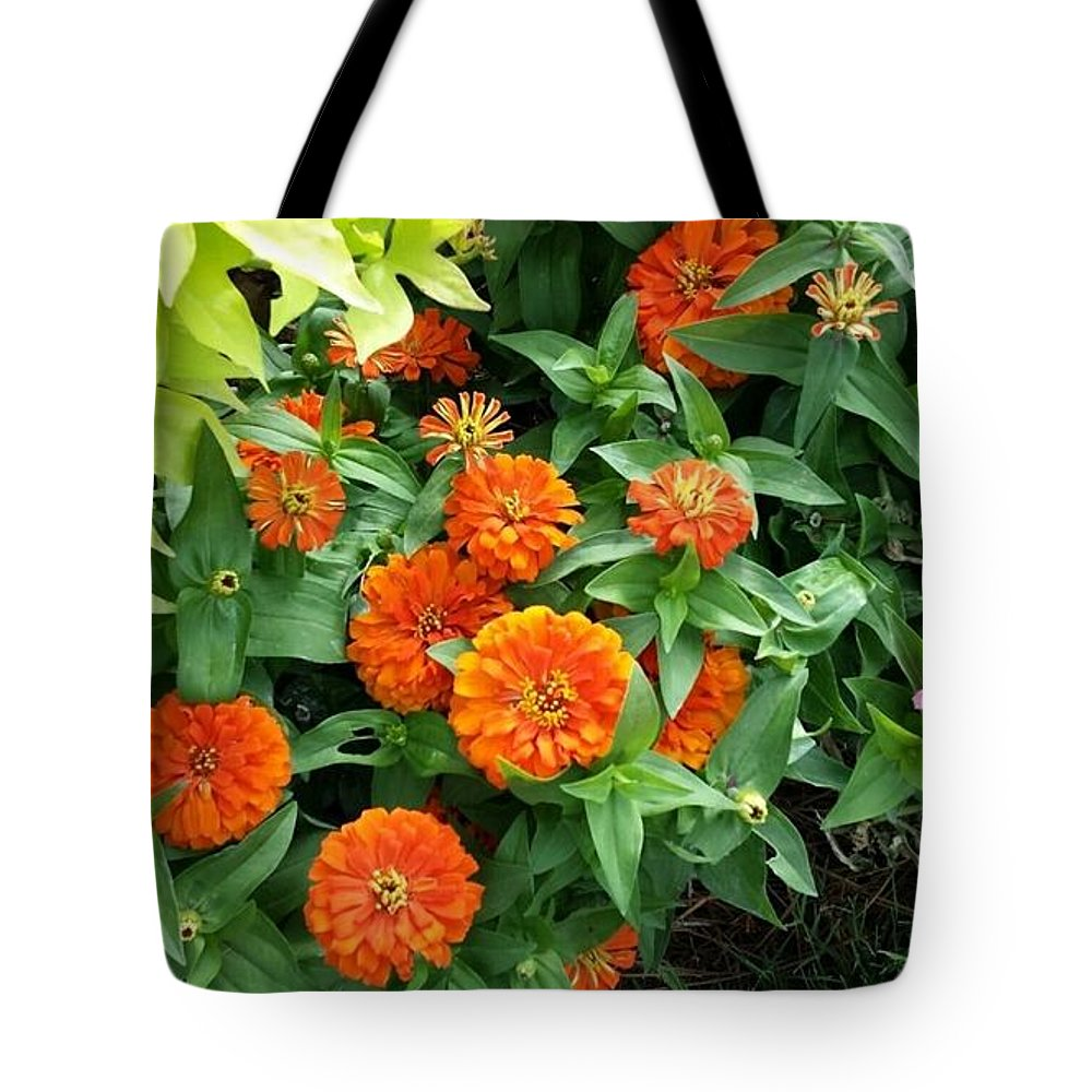 Zinnias Tote Bag featuring the photograph Zesty Zinnias by Maxine Billings