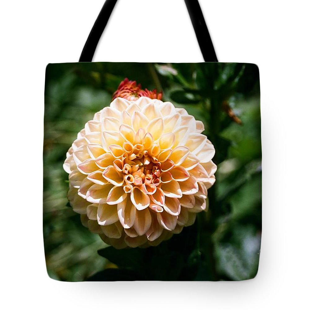 Zinnia Tote Bag featuring the photograph Zinnia by Dean Triolo