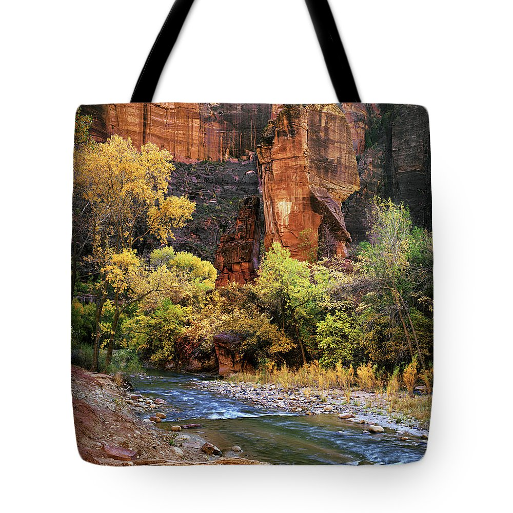 4x5 Tote Bag featuring the photograph Zion National Park 57 by Fred Newman