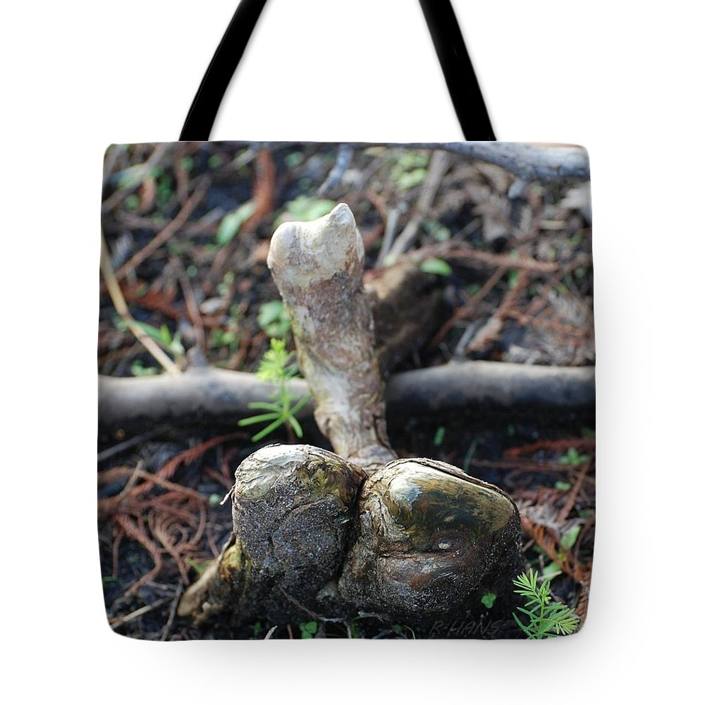 Roots Tote Bag featuring the photograph 0l0 by Rob Hans