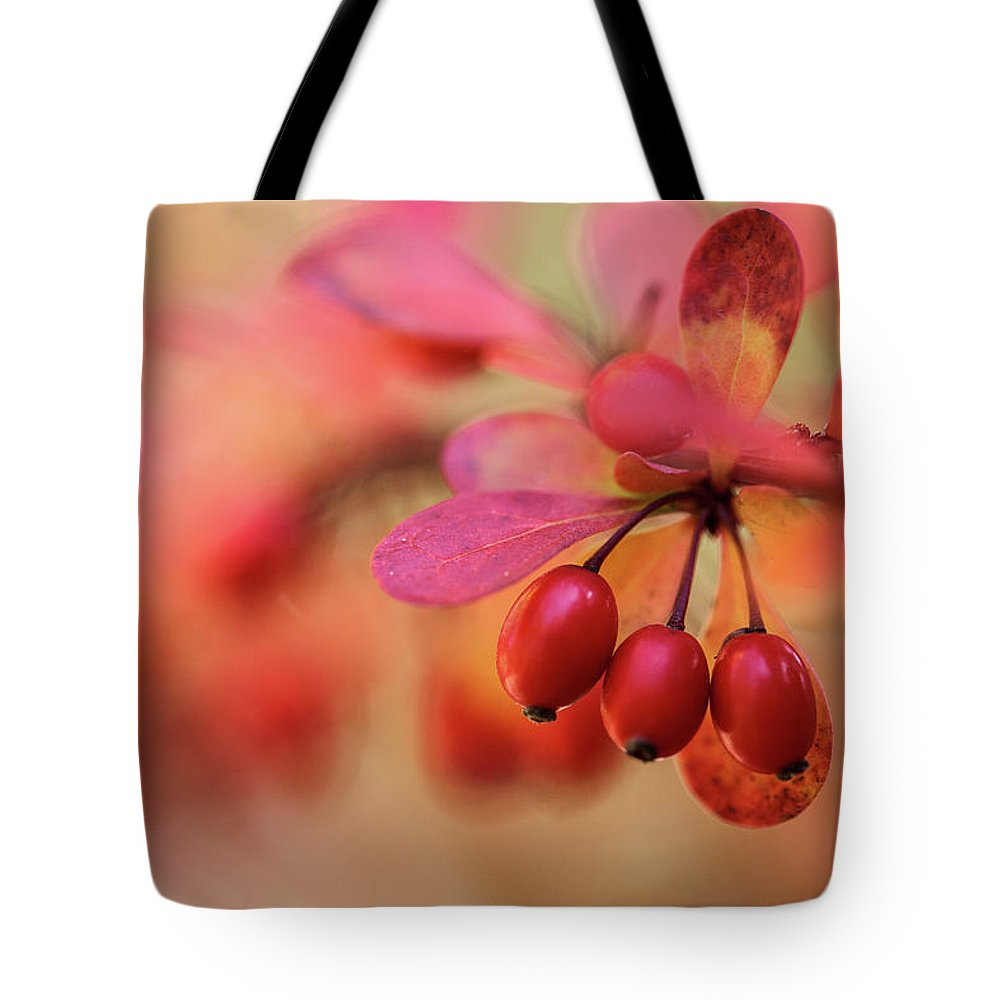 Autumnal Tote Bags