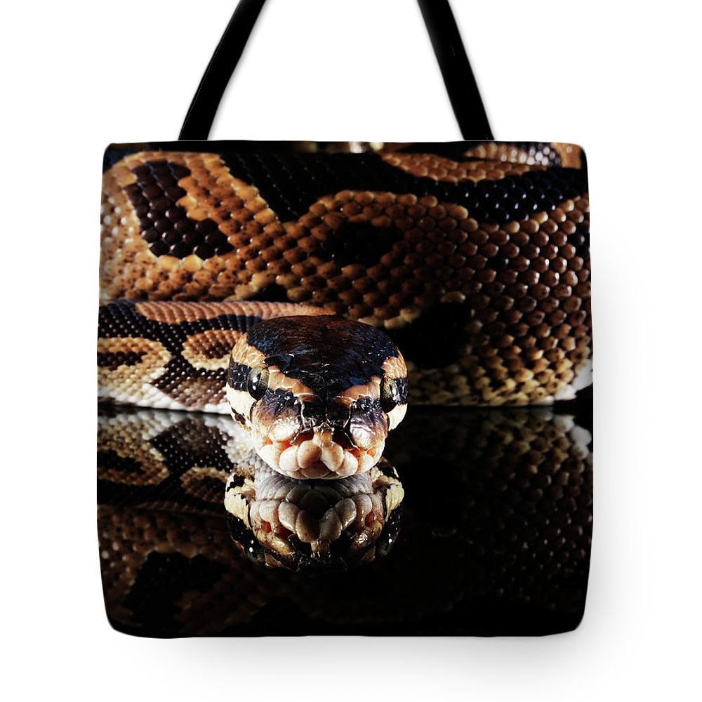 Copenhagen Tote Bag featuring the photograph Burmese Python by Henrik Sorensen