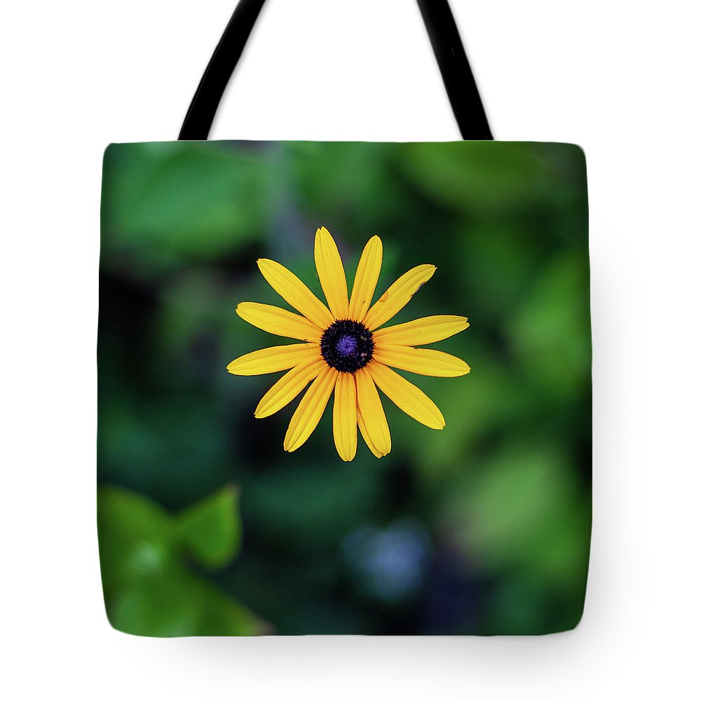 Kings Gap Daisy Patch Flowers Pennsylvania Black-eyed Susans Tote Bag featuring the photograph Black-eyed Susan by John Daly