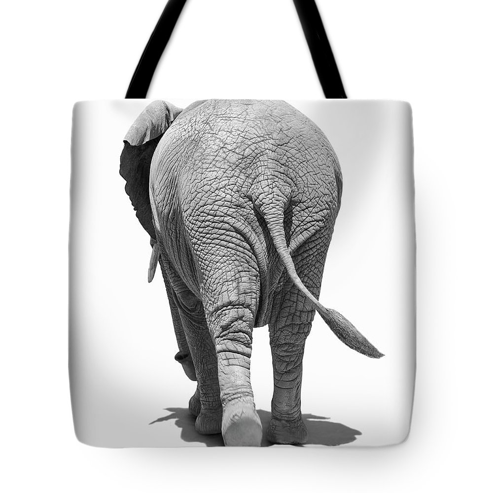 Shadow Tote Bag featuring the photograph Elephants Behind by Burazin