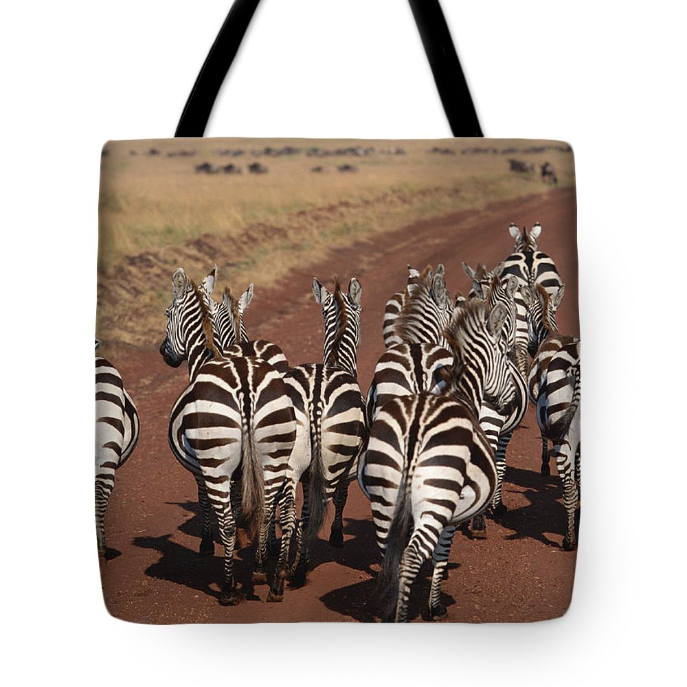 Plains Zebra Tote Bag featuring the photograph Grant Zebra by Imagenavi