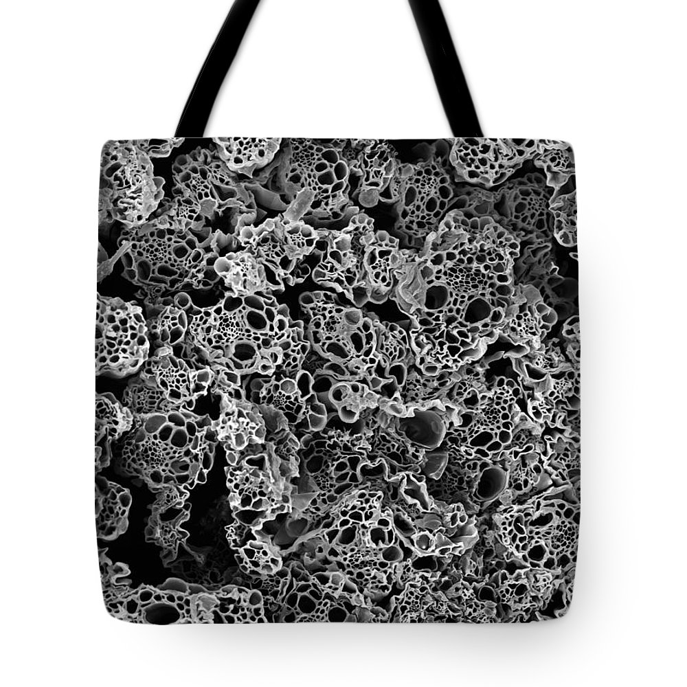 Microscope Tote Bag featuring the photograph Lemongrass Cross Section, Sem by Sheri Neva