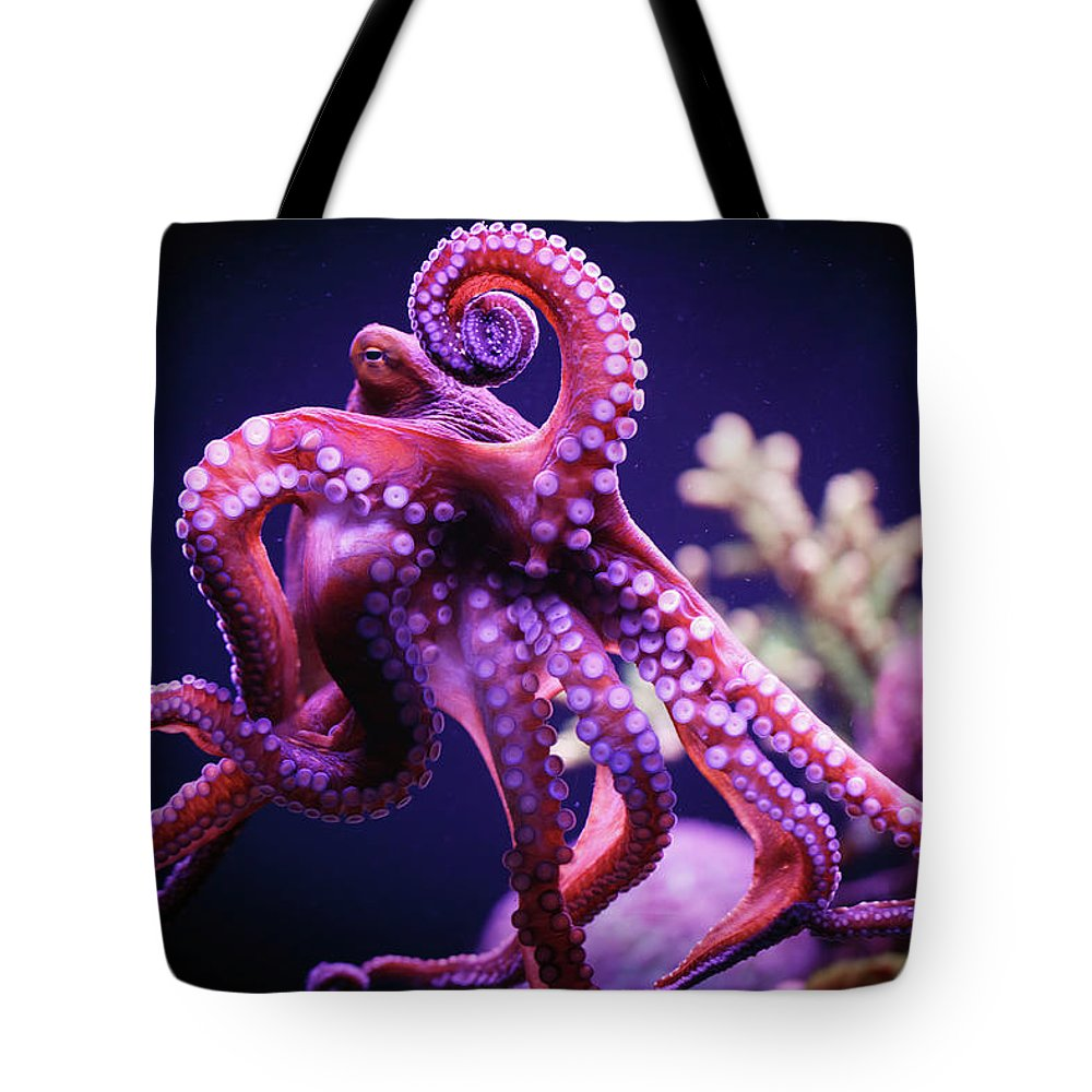 Underwater Tote Bag featuring the photograph Octopus by Reynold Mainse / Design Pics