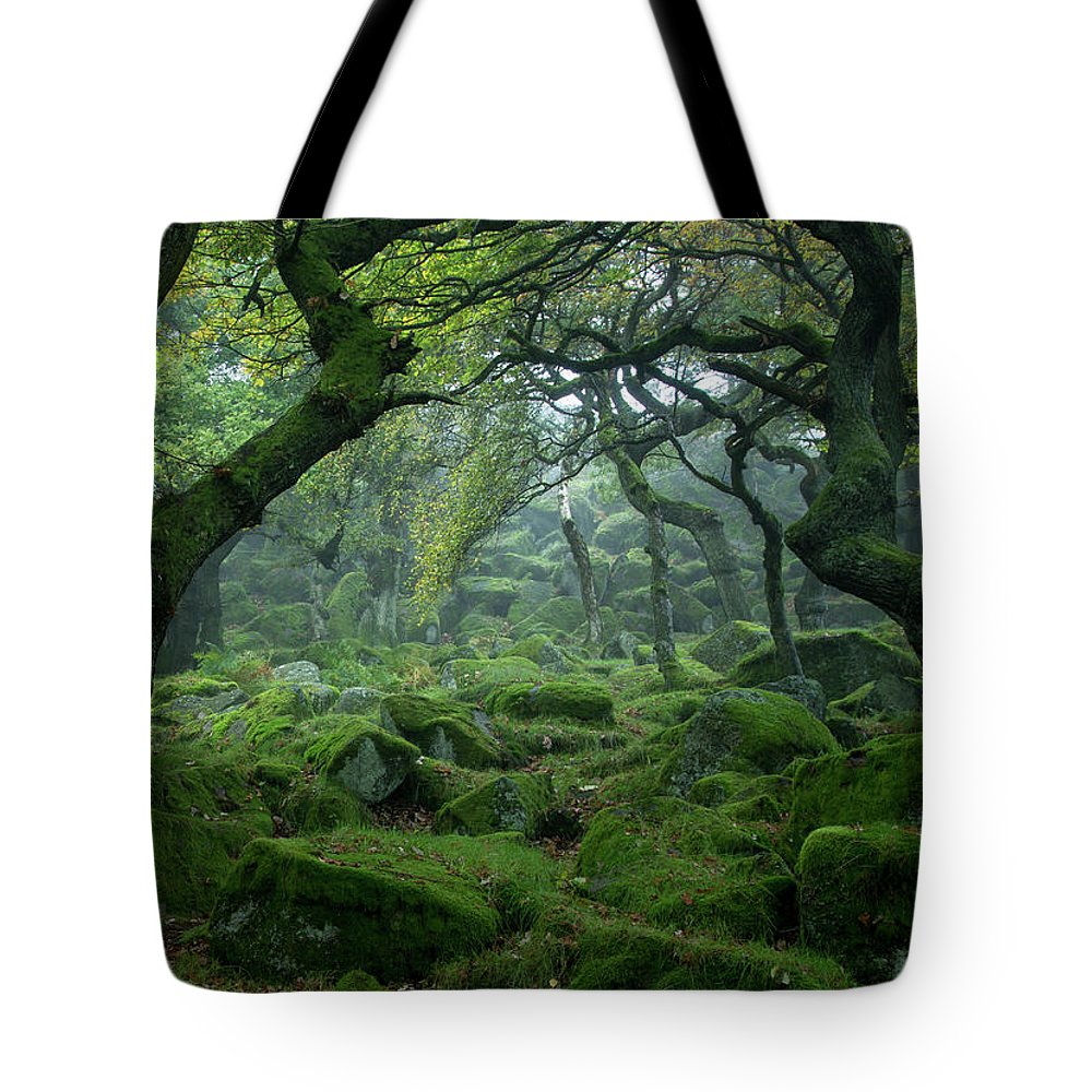 Tranquility Tote Bag featuring the photograph Padley Gorge by Duncan Fawkes