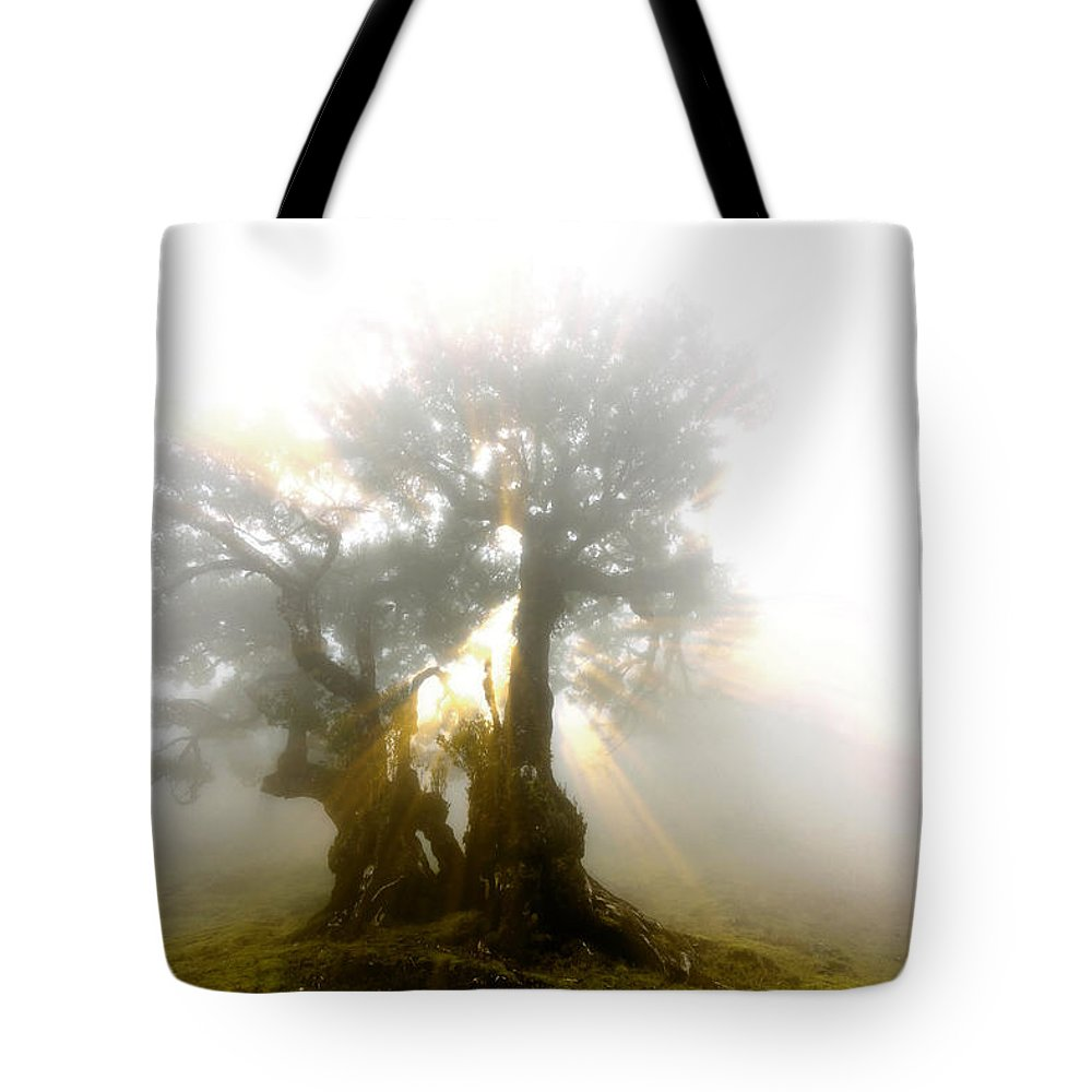 Fog Tote Bag featuring the photograph Place Of Silence by Sasha