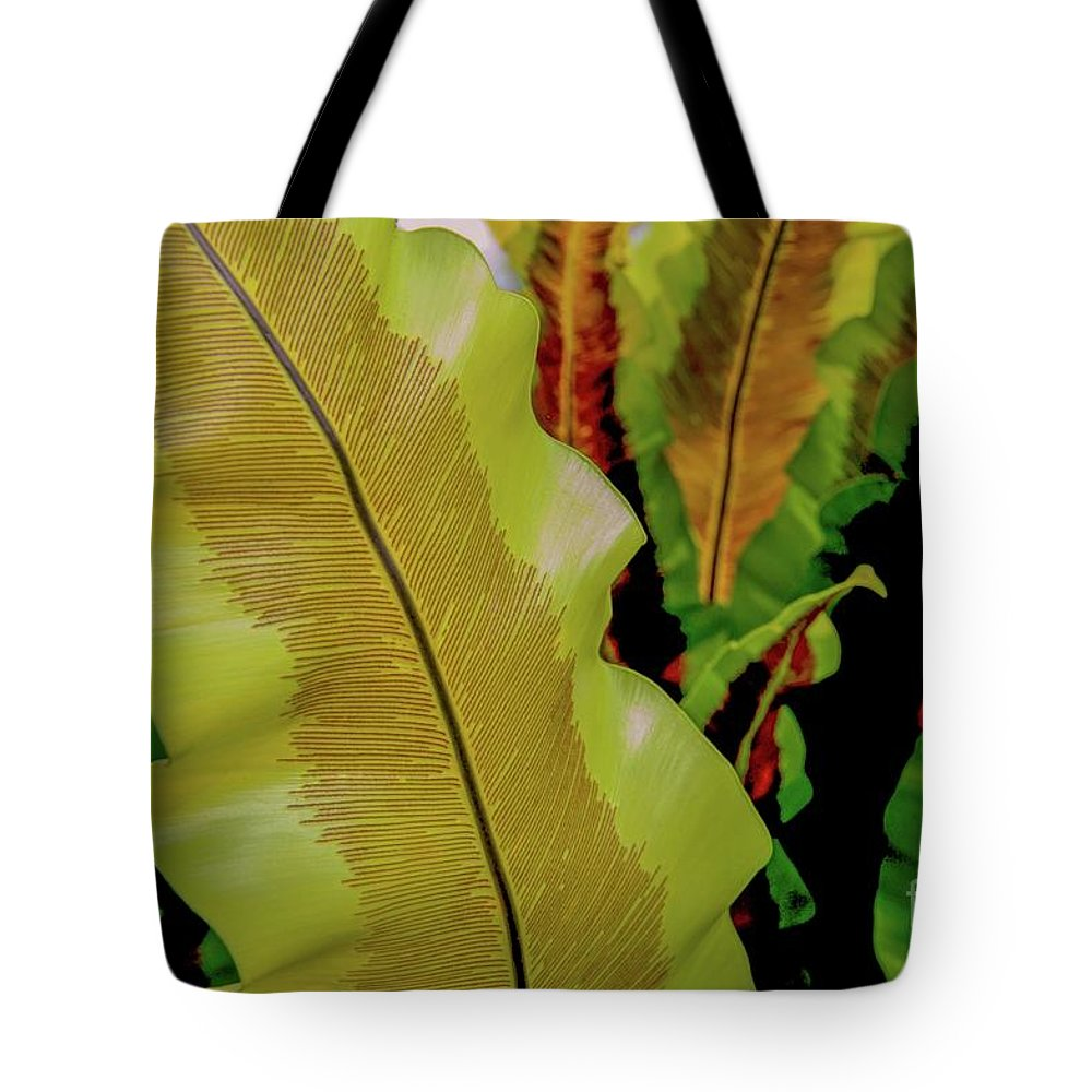 Plants Tote Bag featuring the photograph Plants And Leaves Hawaii by D Davila