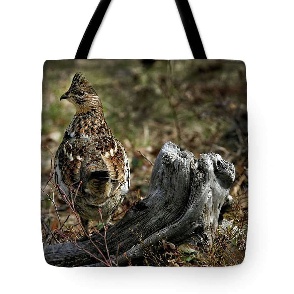 Ruffed Grouse Tote Bag featuring the photograph Ruffed Grouse 50701 by Rick Veldman