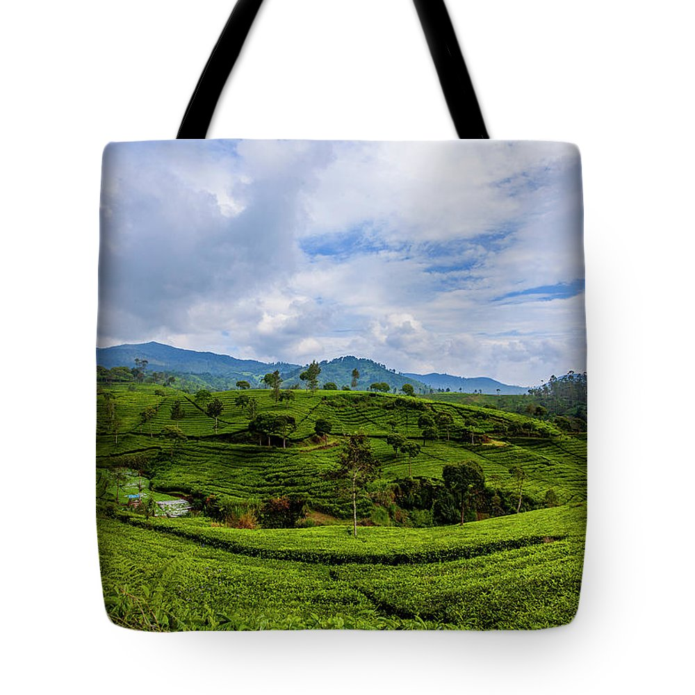 Nature Seekers Tote Bags