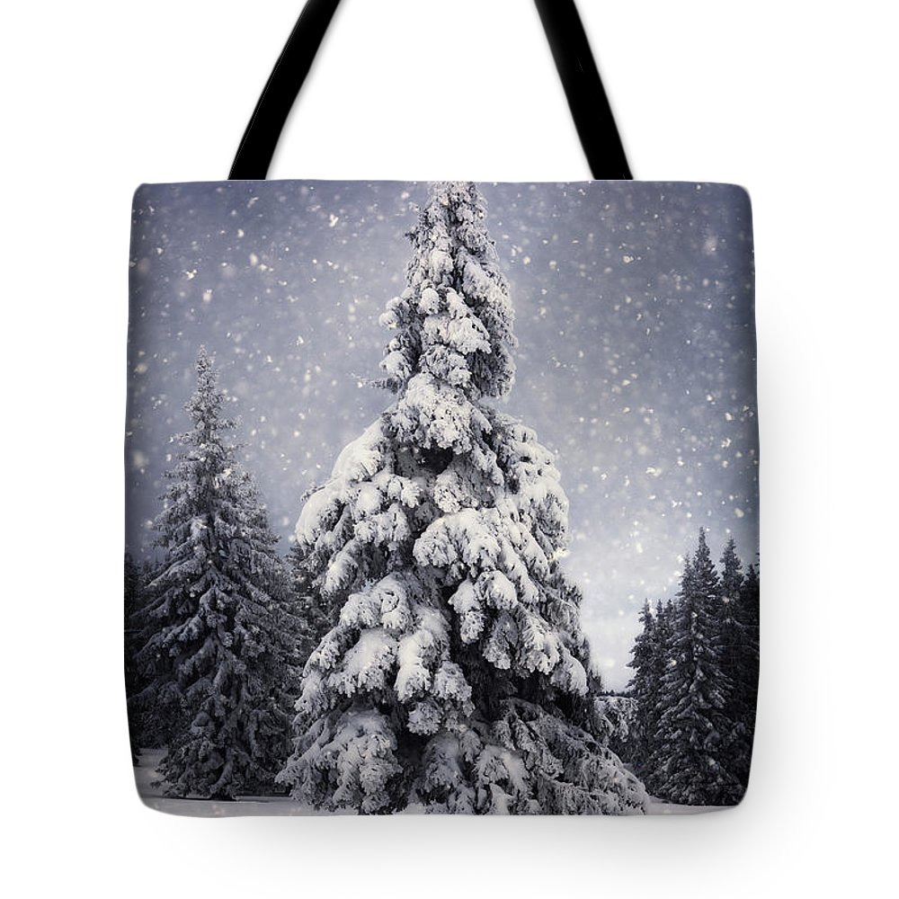 Scenics Tote Bag featuring the photograph Winter Tree by Borchee