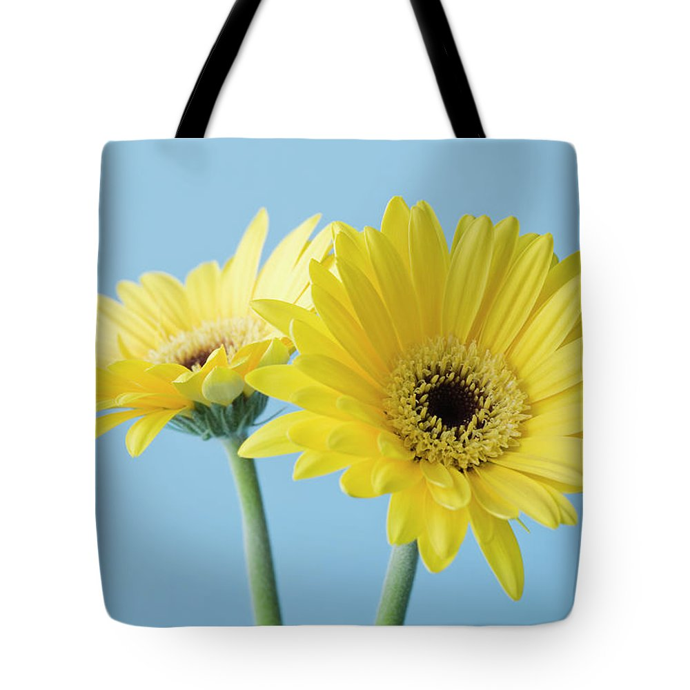 Two Objects Tote Bag featuring the photograph Yellow Flowers On Blue Background by Kristin Lee