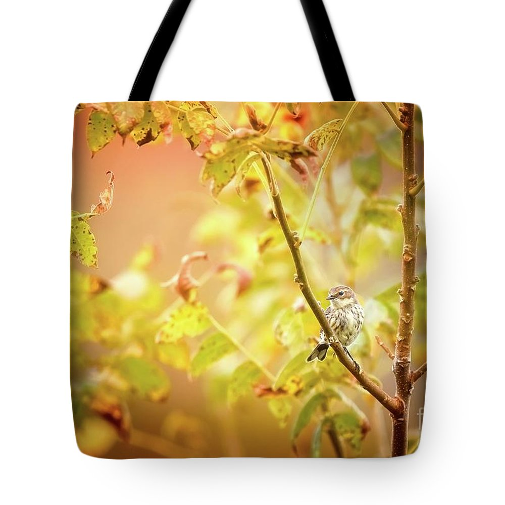 Aves Tote Bag featuring the photograph Yellow-rumped Warbler by Heather Hubbard