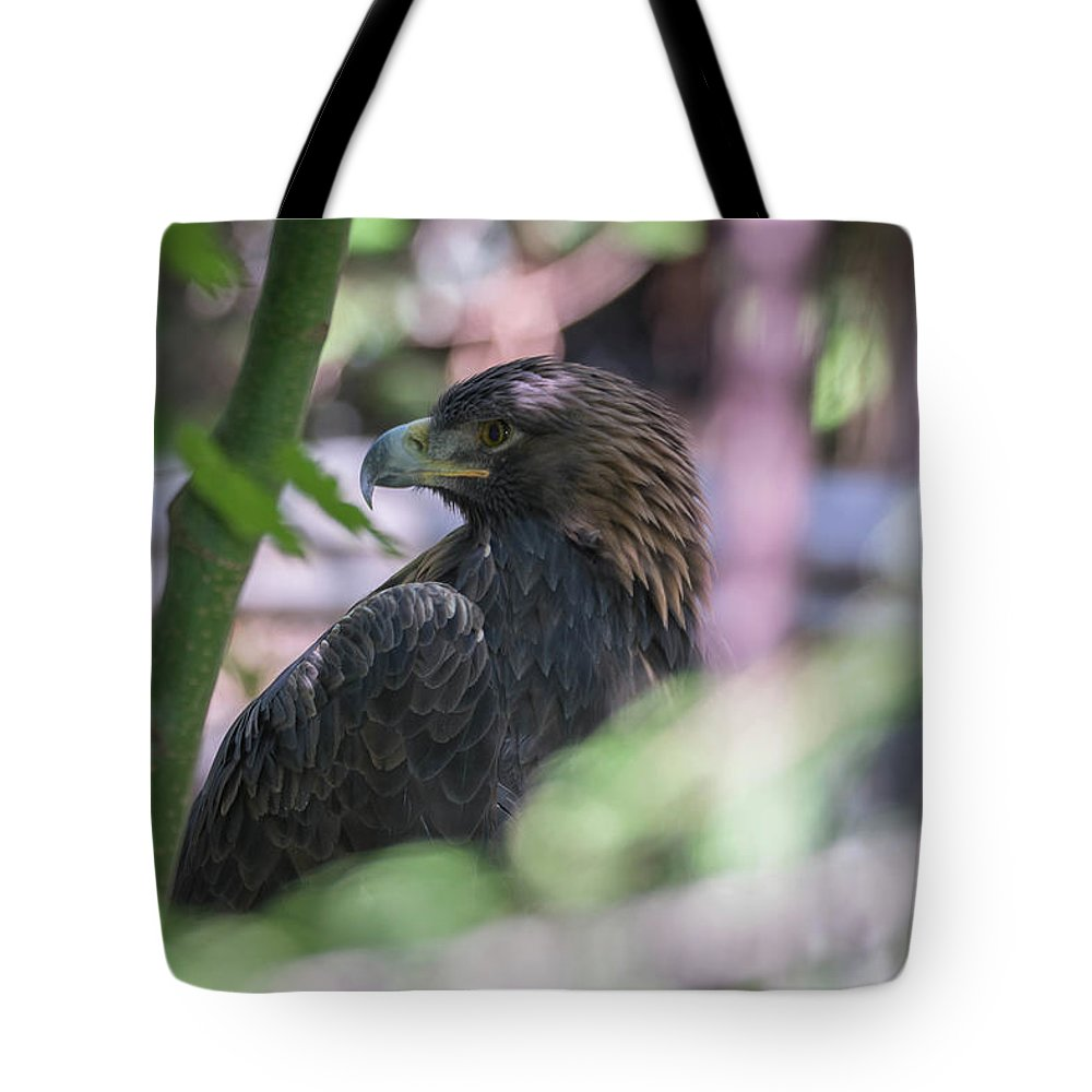 Eagle Tote Bag featuring the photograph Eagle by James Farrell