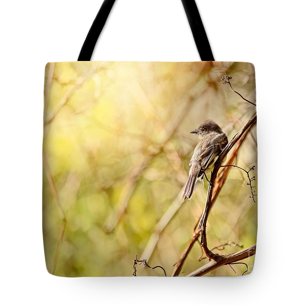 Aves Tote Bag featuring the photograph Eastern Phoebe by Heather Hubbard