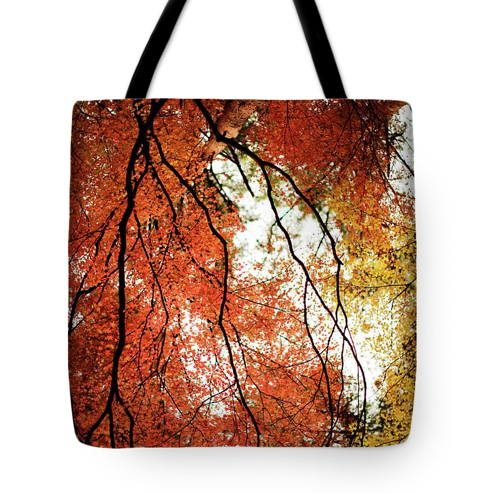 Tranquility Tote Bag featuring the photograph Fall Colors In Japan by Jdphotography