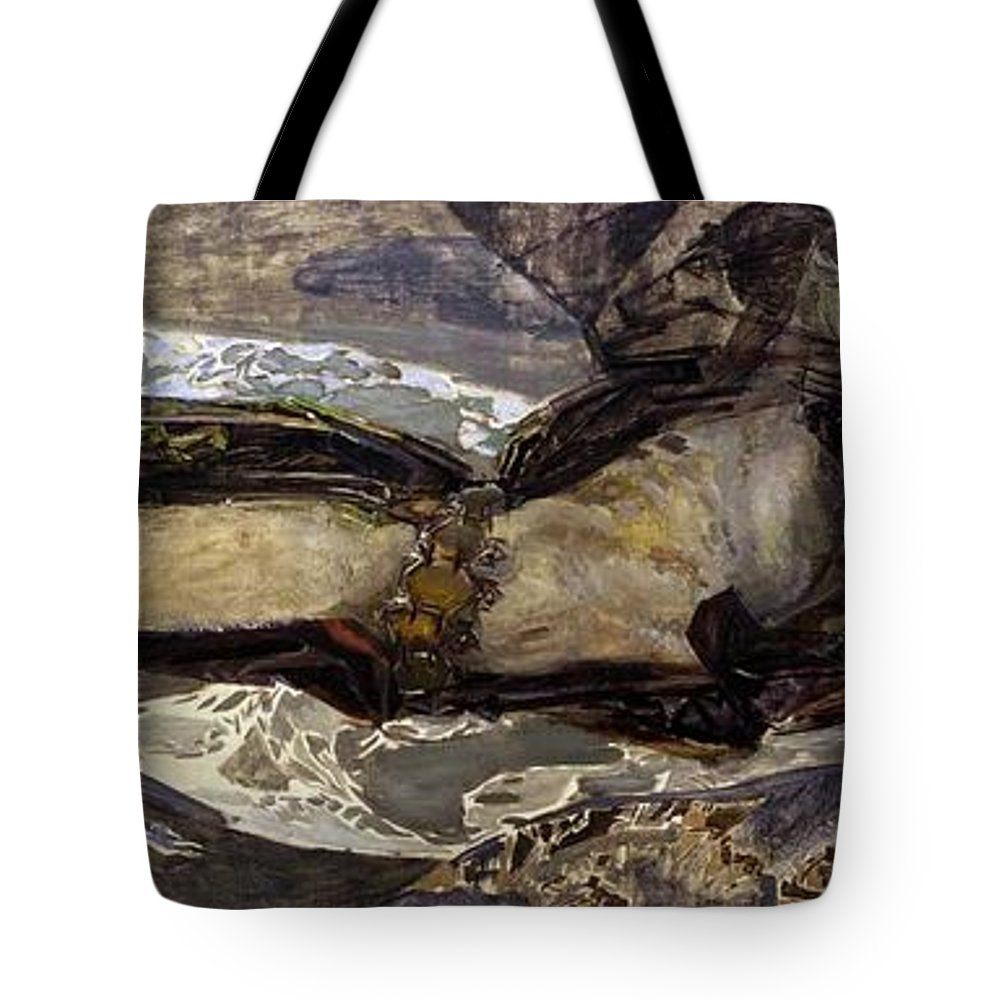 1899 Tote Bag featuring the photograph Flying Demon by Peter Barritt