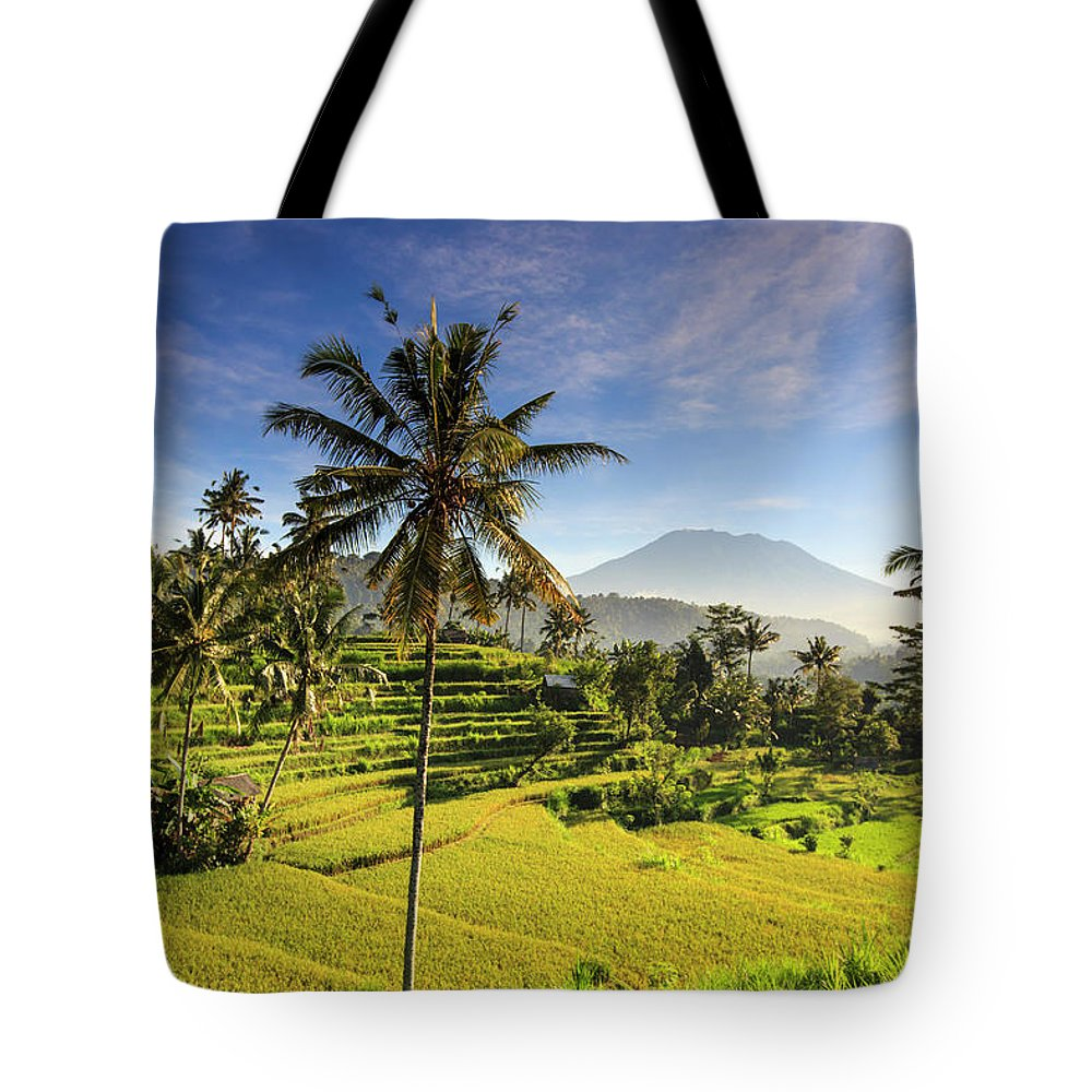 Tranquility Tote Bag featuring the photograph Indonesia, Bali, Rice Fields And Agung by Michele Falzone
