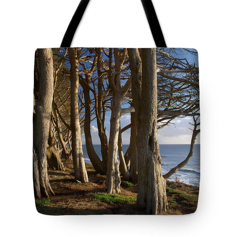 Tranquility Tote Bag featuring the photograph Rustic Davenport Coast by Mitch Diamond