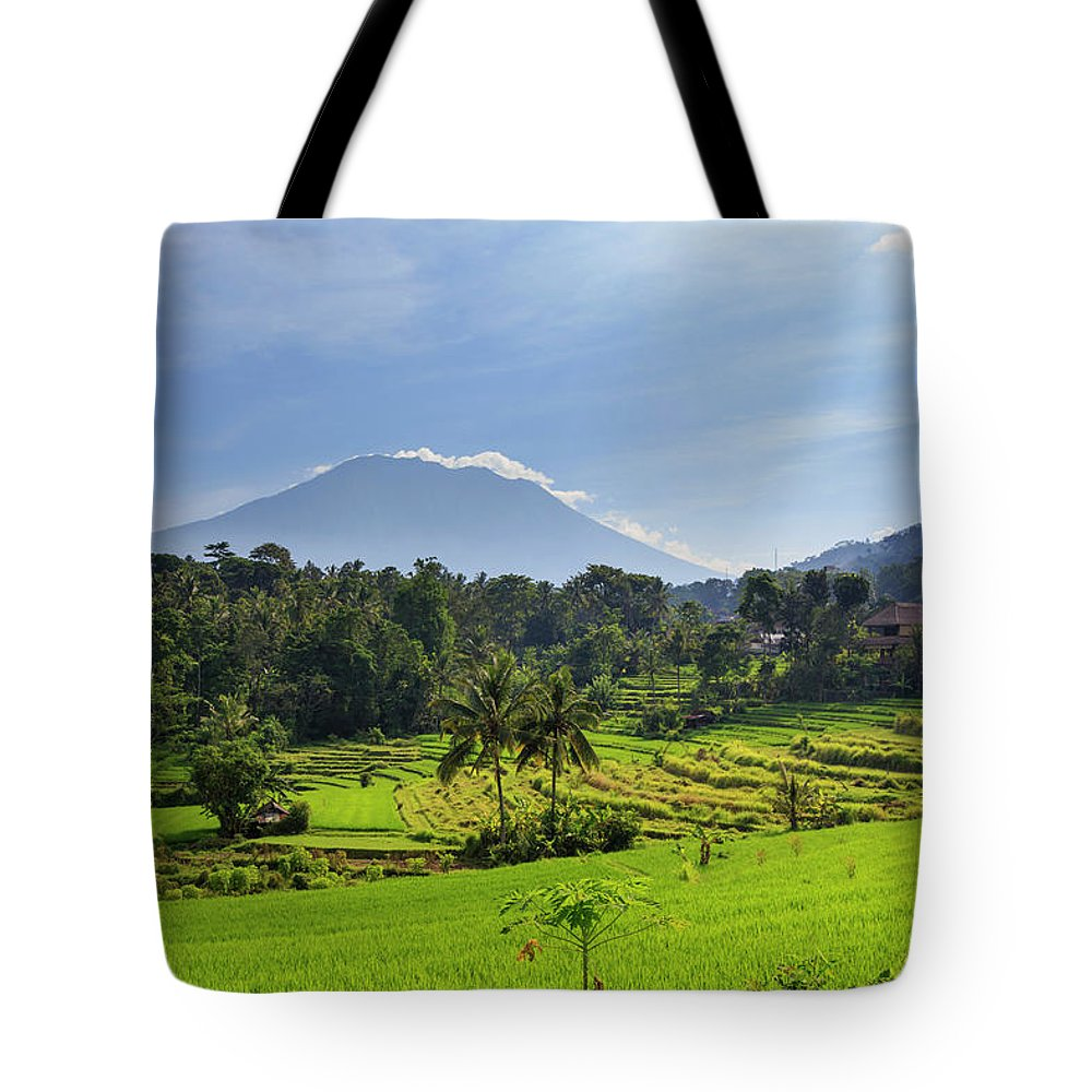 Scenics Tote Bag featuring the photograph Indonesia, Bali, Rice Fields And by Michele Falzone