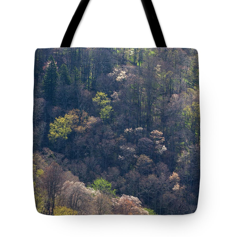 Scenics Tote Bag featuring the photograph Early Spring, North Carolina by Jerry Whaley