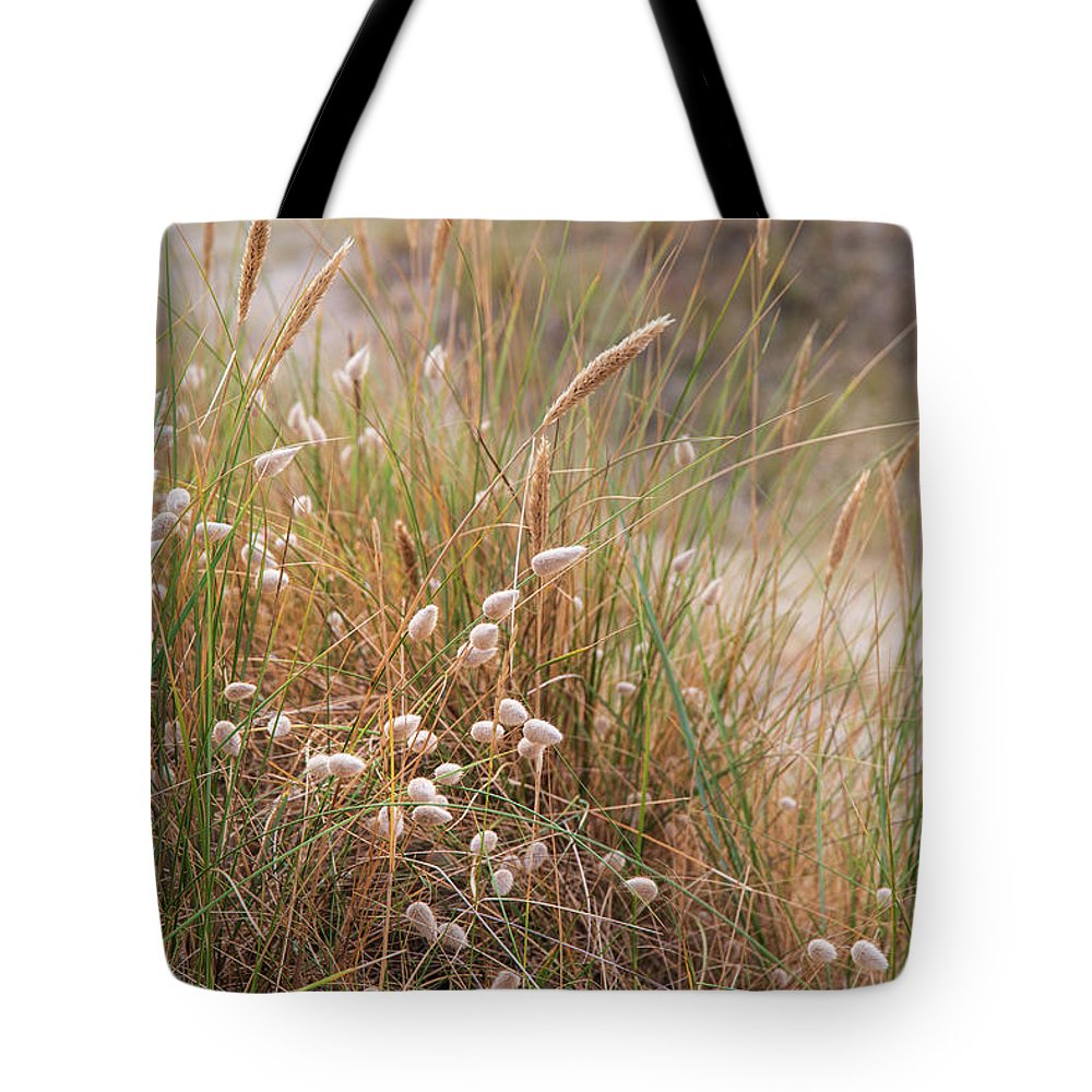 Landscape Tote Bag featuring the photograph Late Evening Sunset Summer Rays Of Sun Light Up Sand Dunes And G by Matthew Gibson