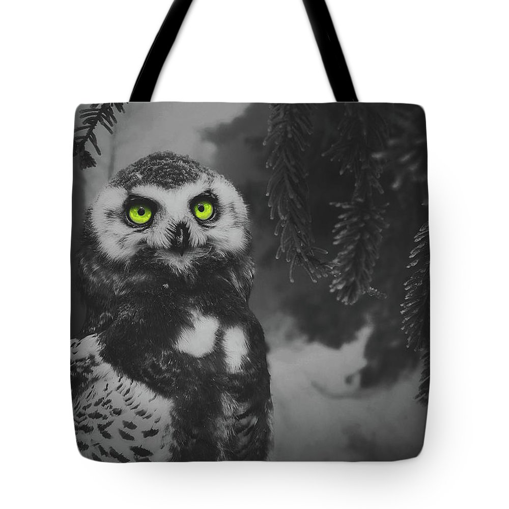Owl Tote Bag featuring the photograph Winter Owl by Pixabay