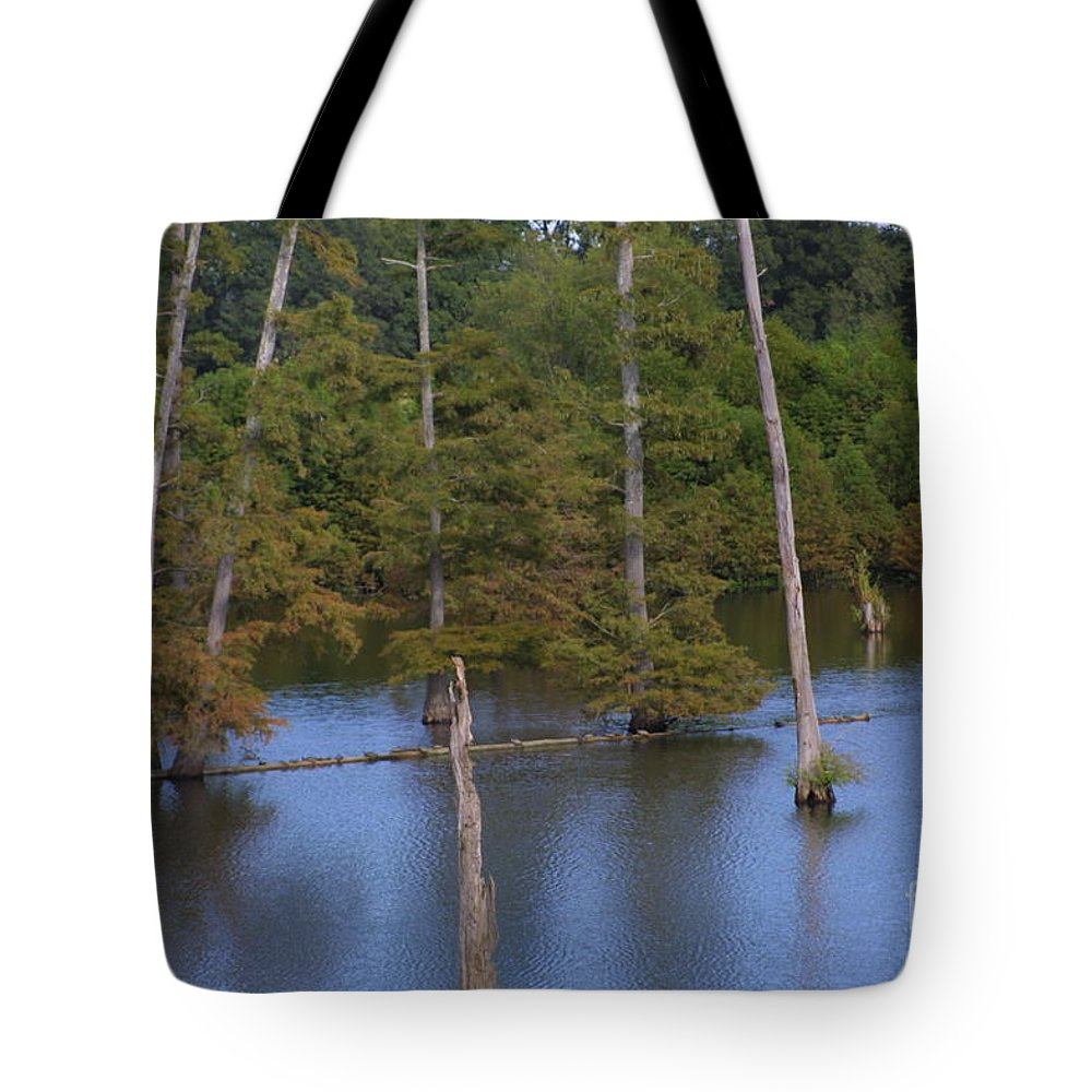 Tennessee Cypress Tote Bag featuring the photograph Tennesse Cypress In Wetland by Darren Dwayne Frazier