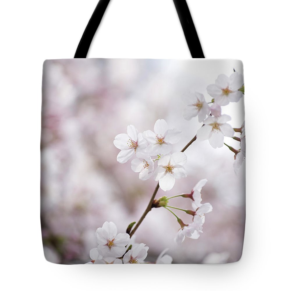 Celebration Tote Bag featuring the photograph Cherry Blossoms by Ooyoo