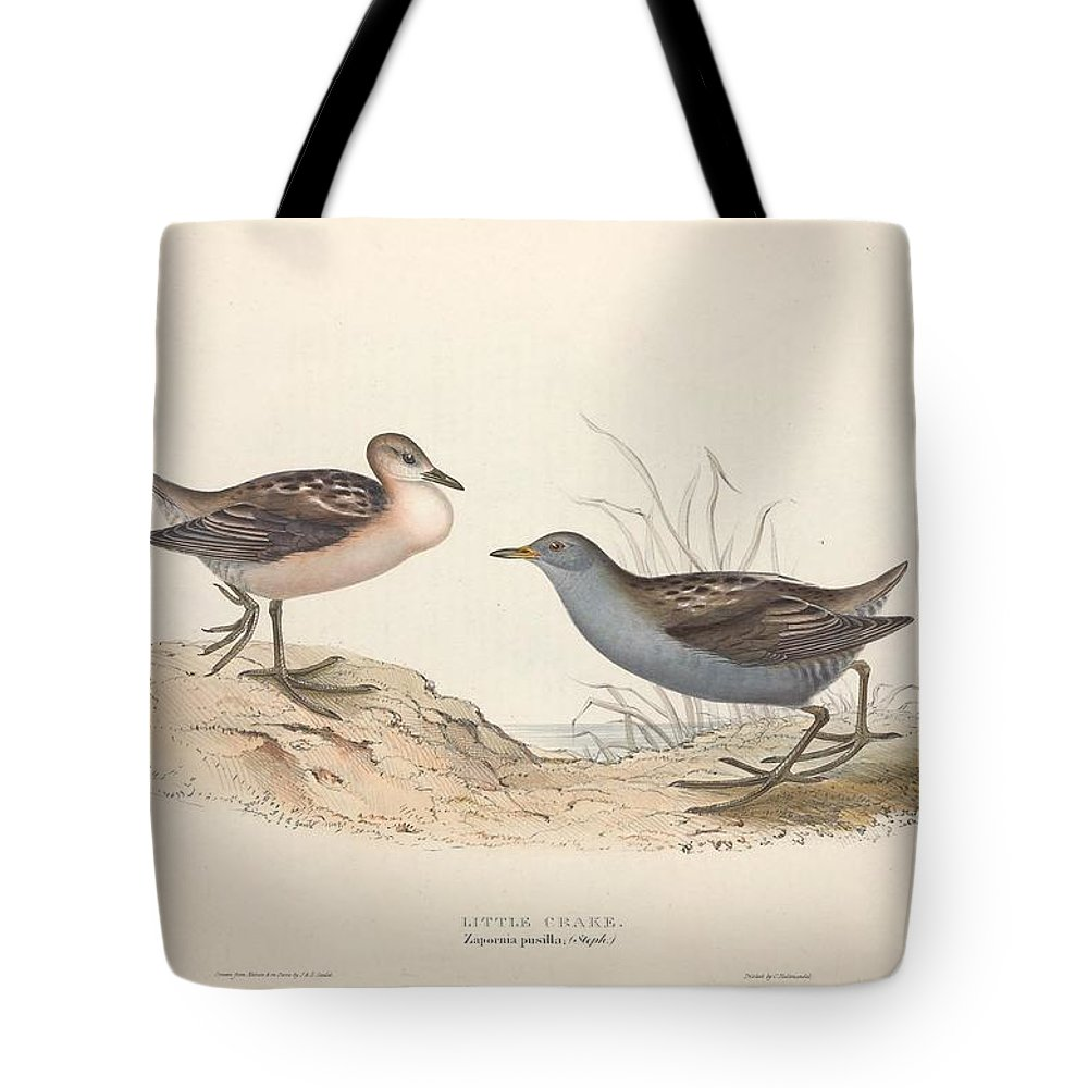Nature Tote Bag featuring the painting Different Types Of Birds Illustrated By Charles Dessalines D Orbigny 1806-1876 21 by Charles Dessalines D Orbigny