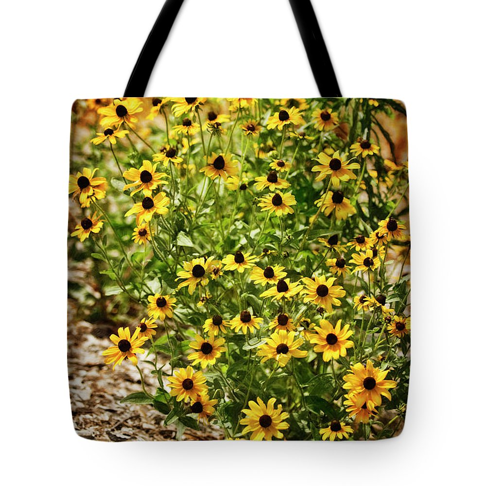 Rockville Tote Bag featuring the photograph A Group Of Bossoming Black-eyed Susans by Maria Mosolova