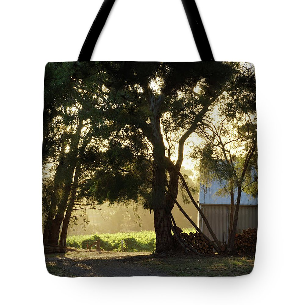 Landscape Tote Bag featuring the photograph A New Day - Magpie Springs - Adelaide Hills Wine Region - South Australia by Avril Thomas