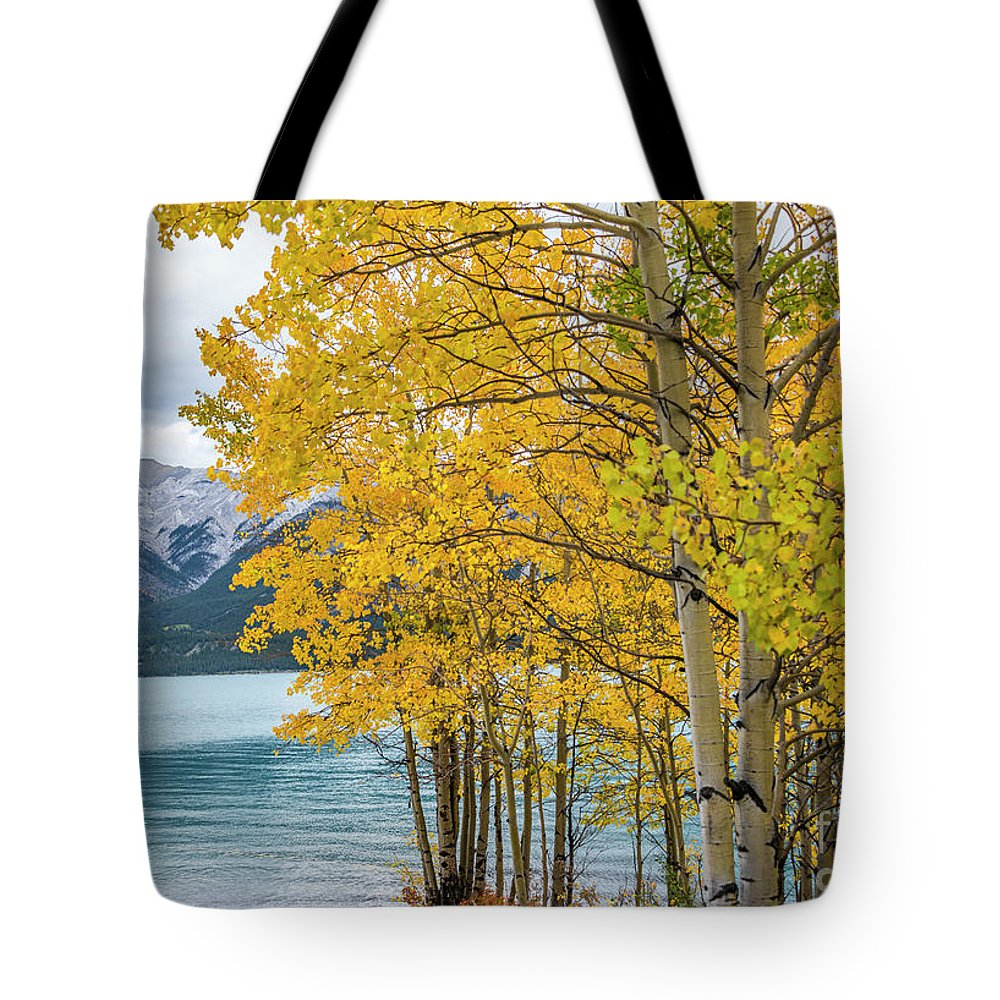 Aspin Trees Tote Bag featuring the photograph Abraham Lake by Minnetta Heidbrink