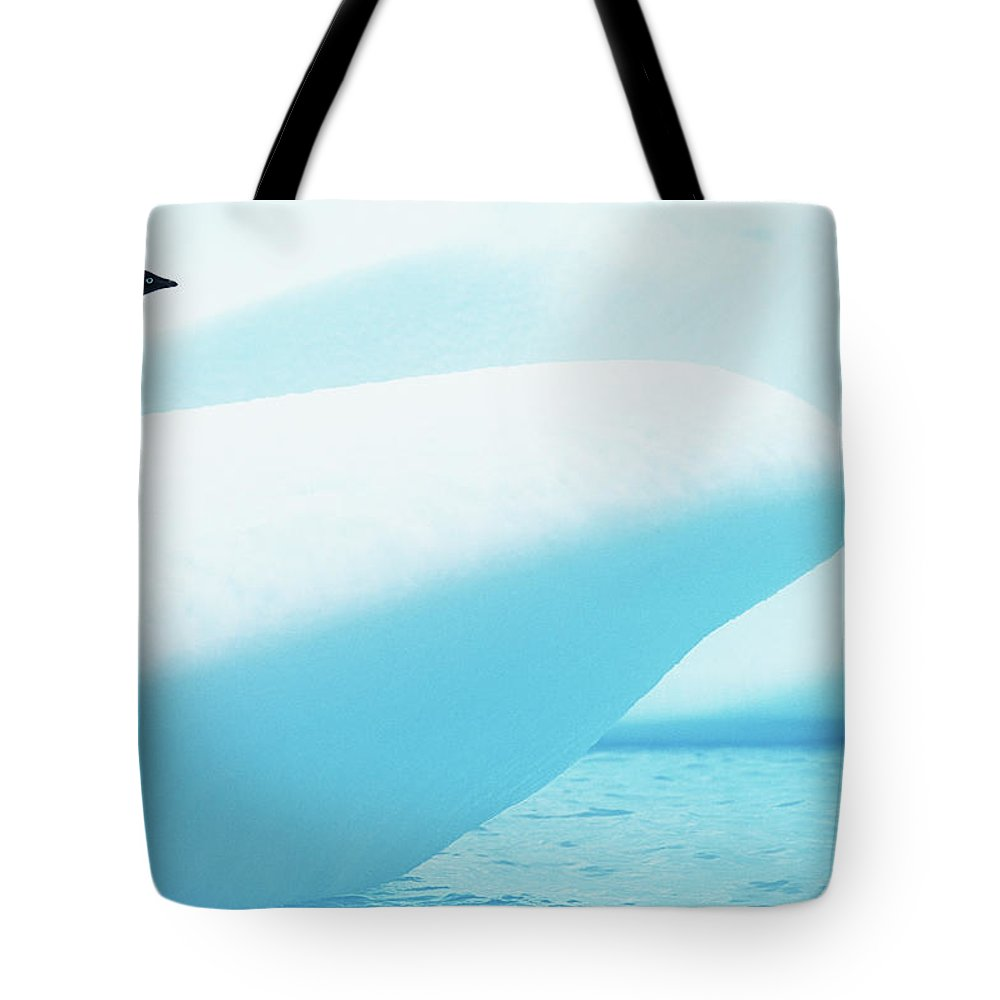 The End Tote Bag featuring the photograph Adelie Penguin Pygoscelis Adeliae by Paul Souders