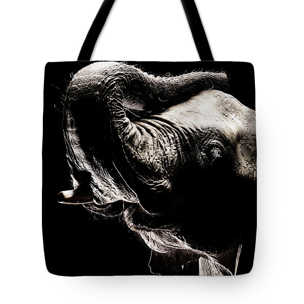 Animal Trunk Tote Bag featuring the photograph African Elephant With The Trunk Raised by Henrik Sorensen