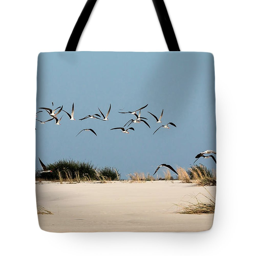 Skimmer Tote Bag featuring the photograph African Skimmers by Claudio Maioli