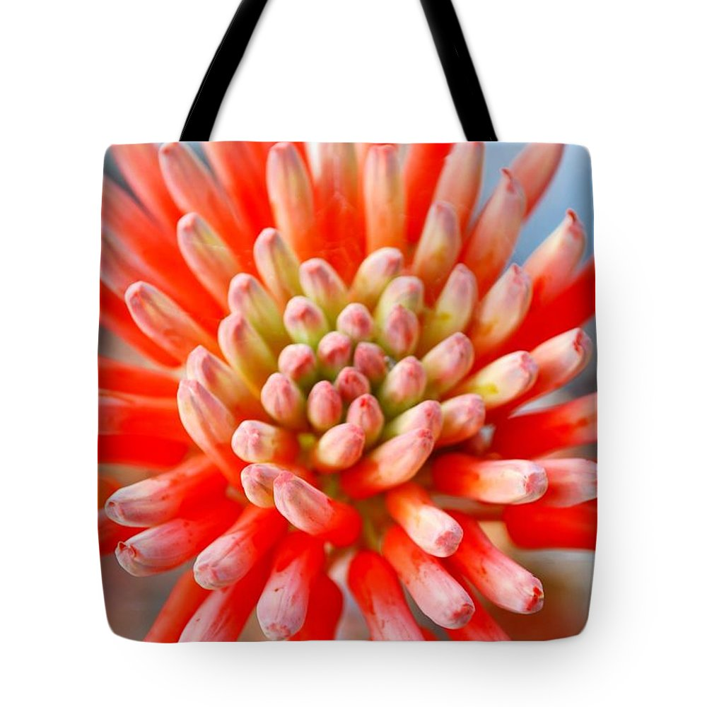 Plant Attribute Tote Bag featuring the photograph Aloe Flower by Lazingbee