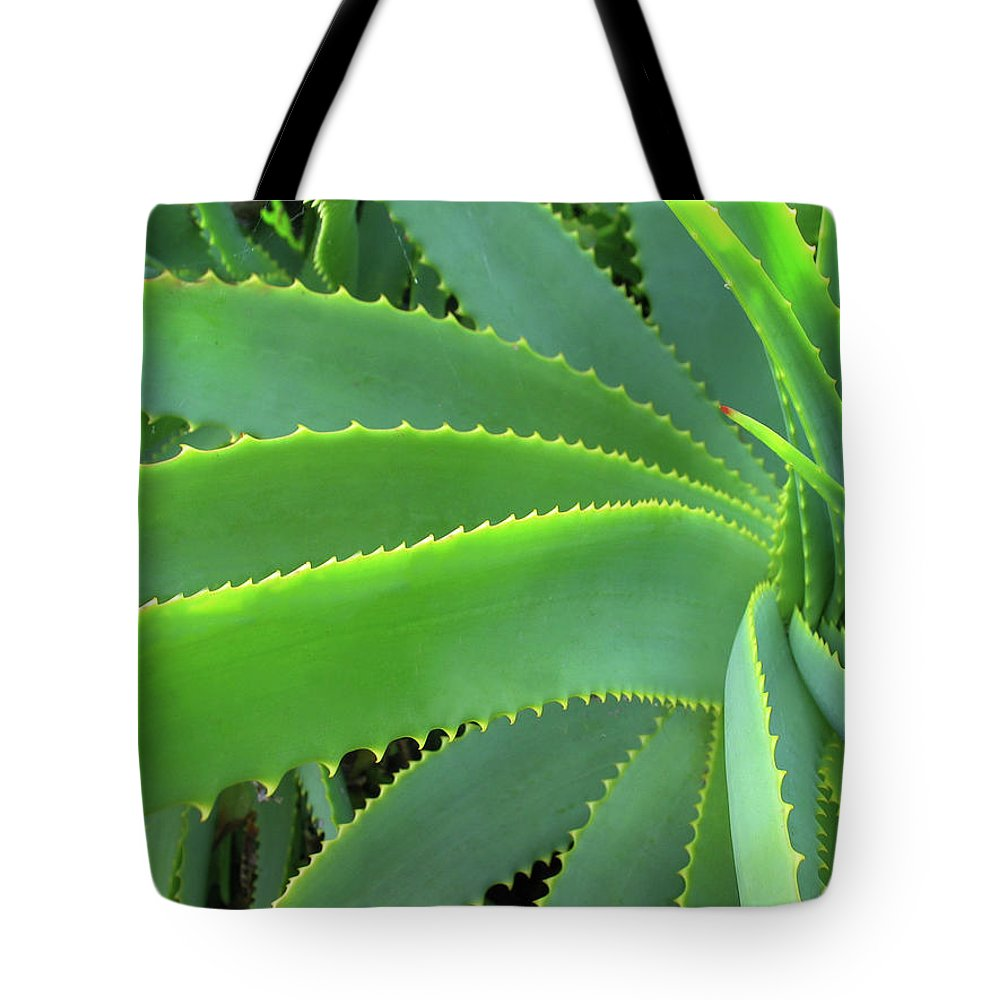 Natural Pattern Tote Bag featuring the photograph Aloe Vera - Healing Plant by Lubilub