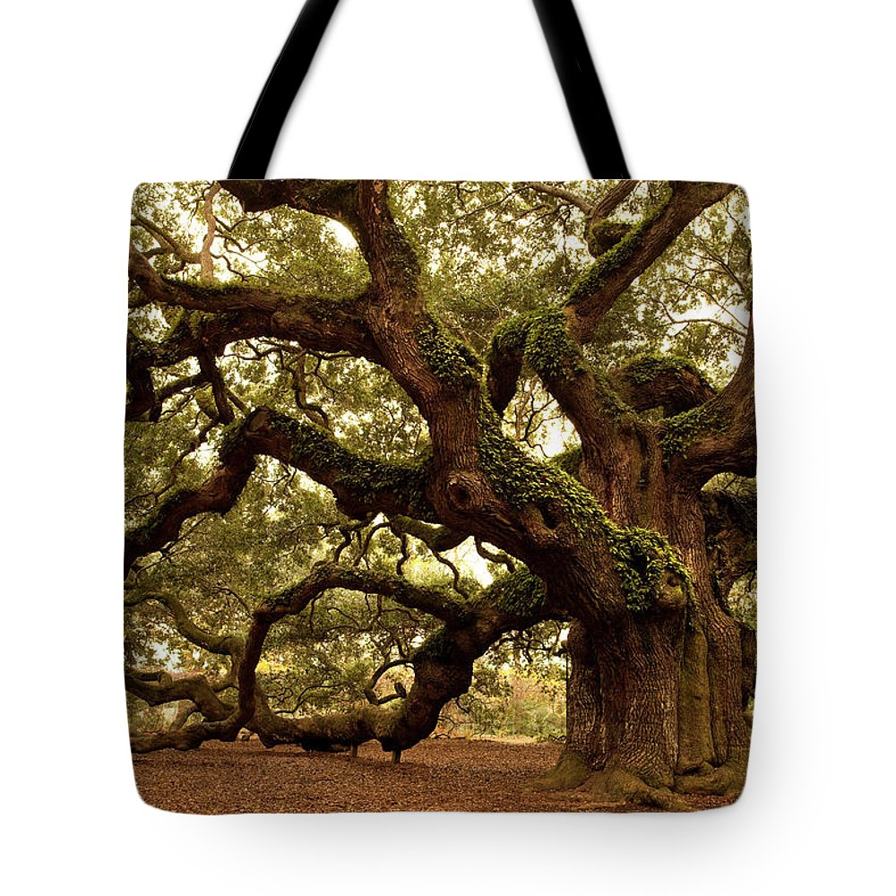 Southern Usa Tote Bag featuring the photograph Ancient Angel Oak Near Charleston by Pgiam